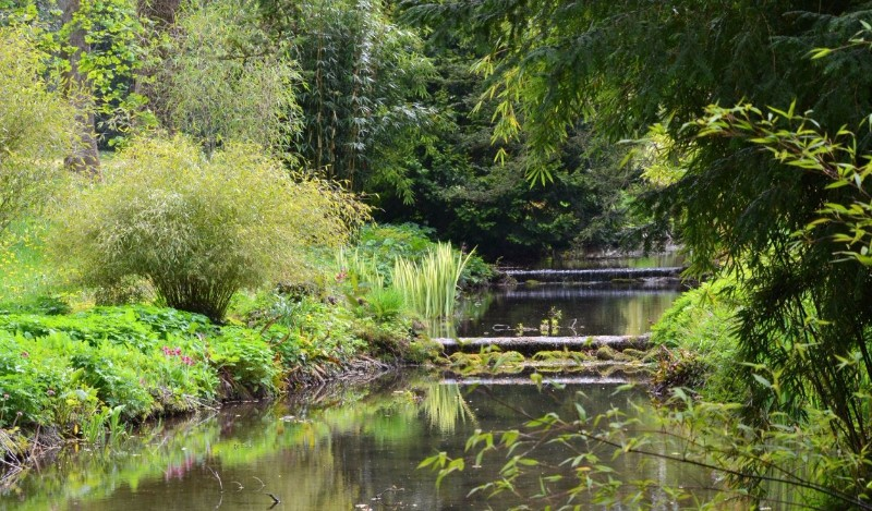 Waterfalls-Thorp-Perrow-Arboretum-Wildlife-Park