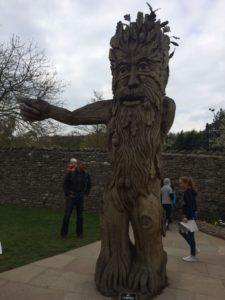 The Forbidden Corner Tree Carving