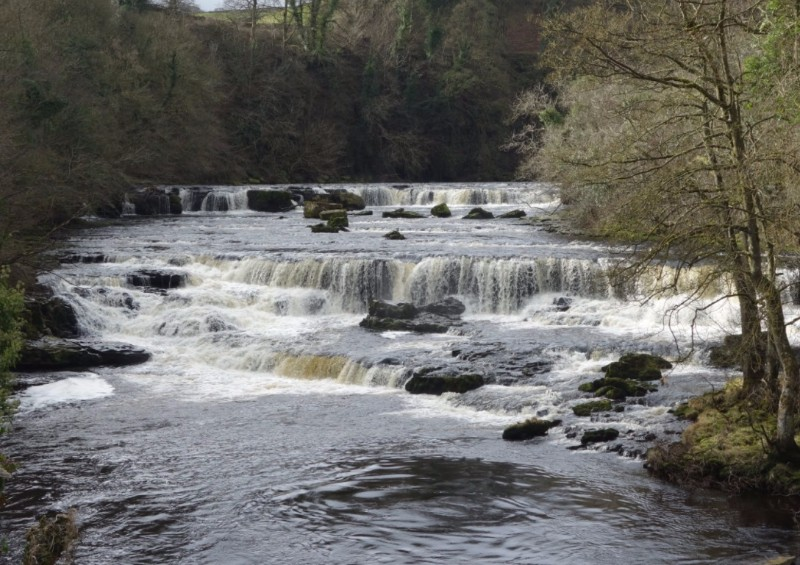 Aysgarth-Falls-in-full-flow