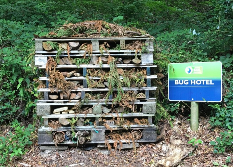 Cornish-Seal-Sanctuary-Bug-Hotel