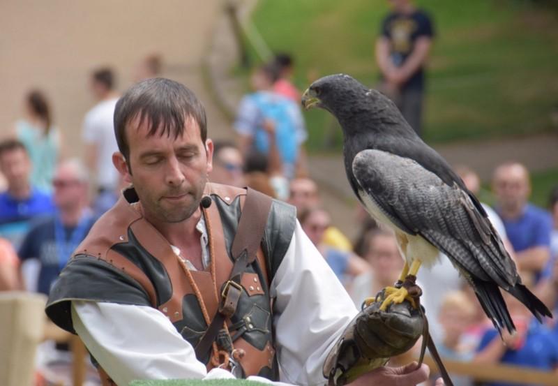 Warwick-Castle-Birds-of-Prey-2