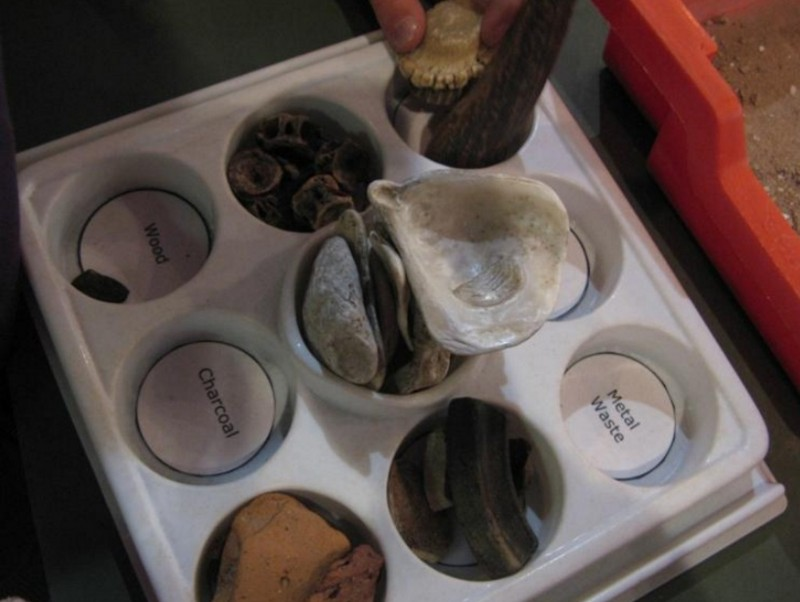 DIG-An-Archaeological-Adventure-Fossil-Sorting