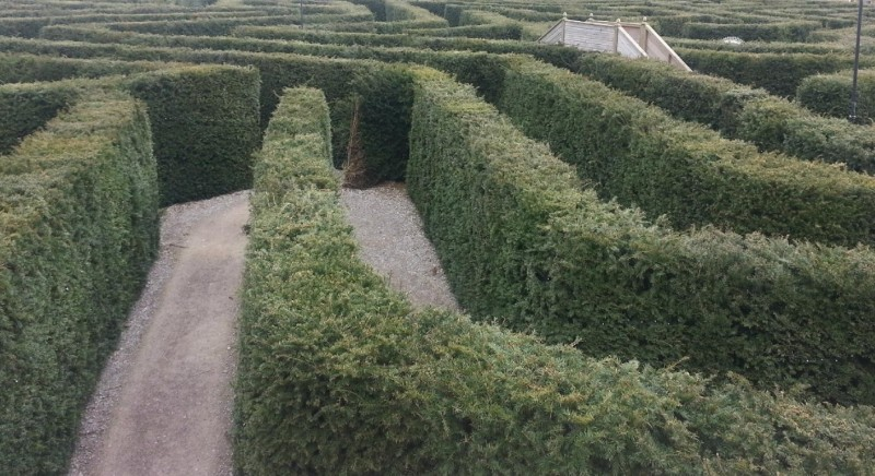 Stockeld-Park-The-Maze