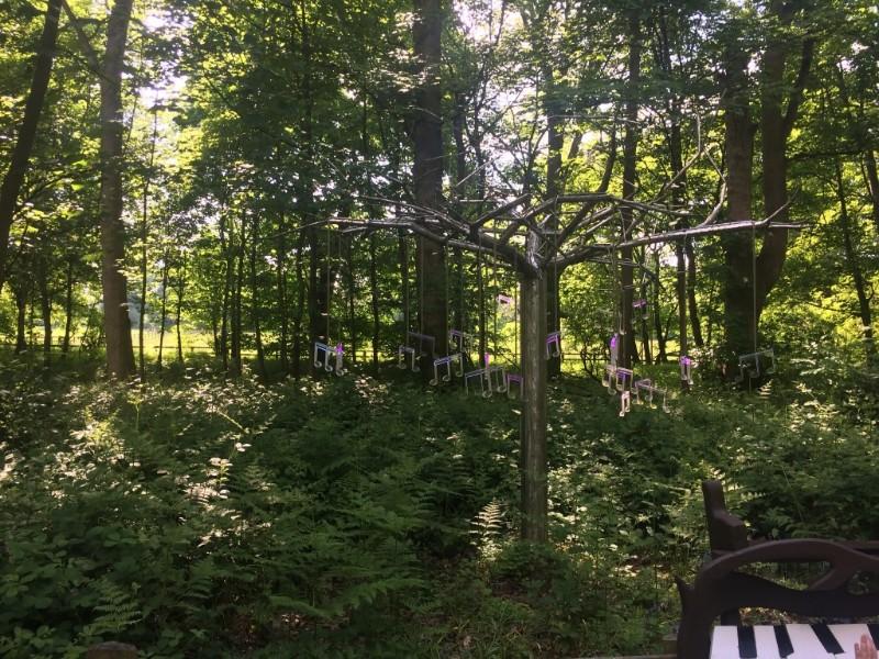 Stockeld-Park-Tree-of-Notes