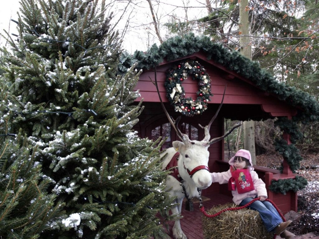 Christmas Events At Uk Theme Parks Attractions Near Me